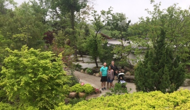 Japenese garden view