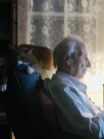 20 Dad